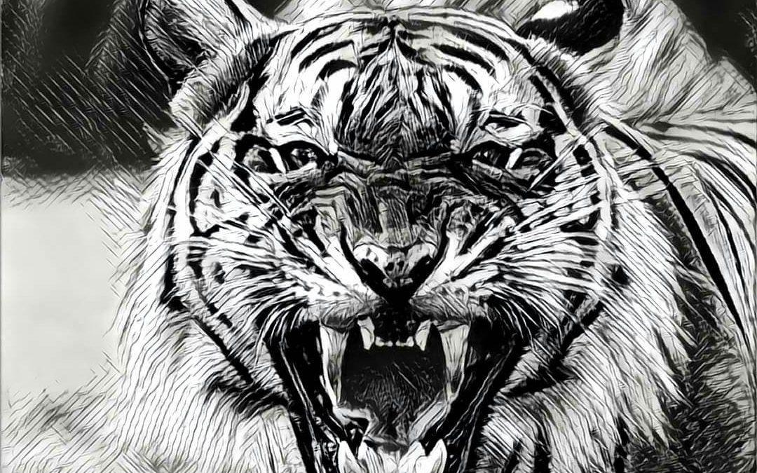 Den Tiger erwecken. Ängste überwinden durch Tanz und Körperarbeit